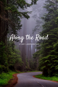 Along the Road by Star LaBranche (Available on Amazon)