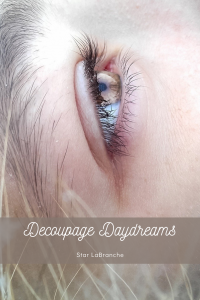 Decoupage Daydreams by Star LaBranche (Unpublished)
