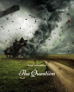 The Question by Star LaBranche (Not Published)